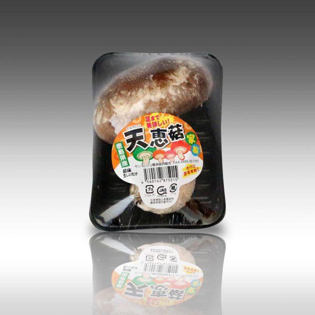 天恵菇家族 キノコ型シール (1)