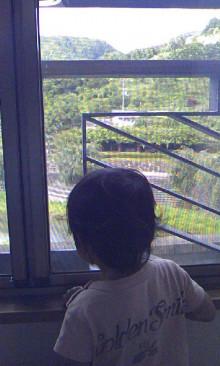 パッケージ松浦 のブログ-100718_0842~01.jpg