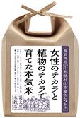 mura_1