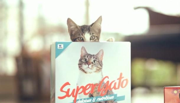super_gato_packaging_box-610x350