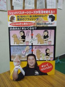 パッケージ松浦 のブログ-小力ポップ