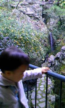 パッケージ松浦 のブログ-100102_1451~01.jpg