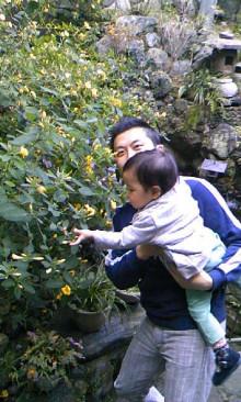 パッケージ松浦 のブログ-100102_1422~01.jpg