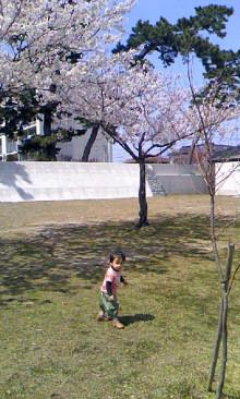 パッケージ松浦 のブログ-100404_1232~01.jpg